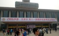 2016石家庄解放广场动漫博览会